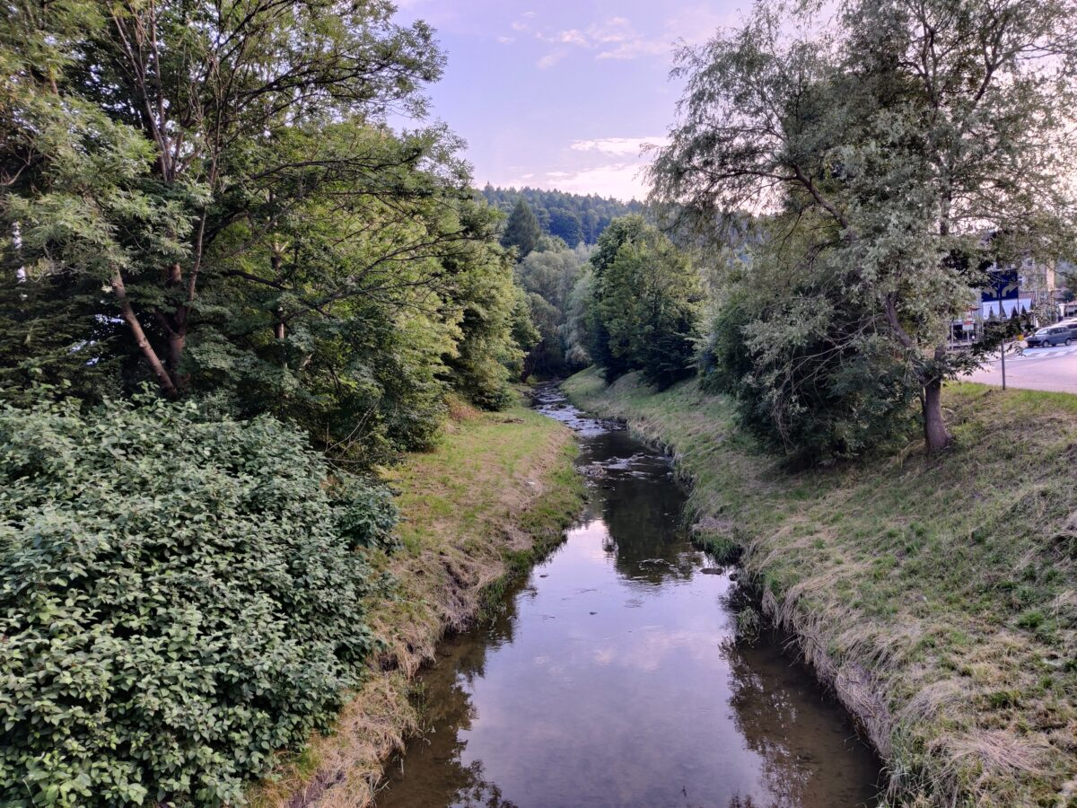 2021 East Carpathian Greenway, Przemyśl, Lviv